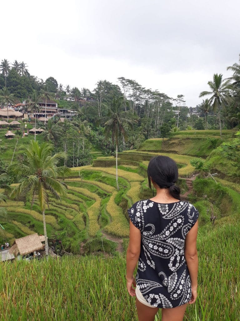 Terrazas de arroz Tegalalang